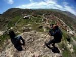 VEYSEL ÇIFTÇI - Sivas'ta İlk Kez Foto Safari Gerçekleştirildi