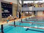 BESTAMI ALKAN - Şehitkamil'de Şenlikler Havuz'da Devam Etti