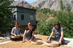 (özel Haber) Avusturyalı Turistler, Köy Hayatını Yaşayarak Öğreniyor