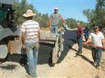 AHMET İNAL - Burhaniye'de Pelitköy Yoluna Sıcak Asfalt Yapıldı