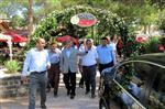 KUREYŞ - Başkan Tahmazoğlu Araban'da Menengiç Kahvesi Molası Verdi.