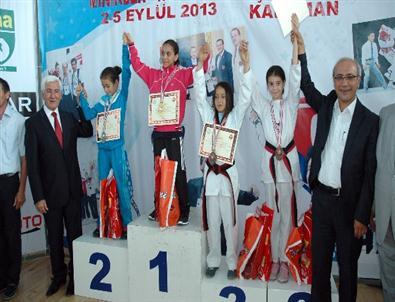 Minikler Türkiye Taekwondo Şampiyonası