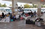 OTOBÜS BİLETLERİ - Terminalde Suriyeli Hareketliliği