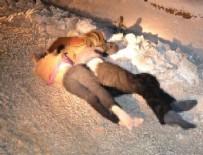 Van'da 3 kişi donarak öldü!
