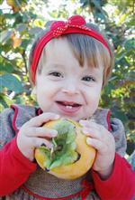 TRABZON HURMASI - Cennet Elması Üreticinin Yüzünü Güldürüyor