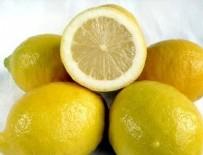 MERSIN - Türkiye'de bir ilk: Çekirdeksiz limon