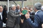 SÜLEYMAN KARA - Bitlis'te Üç Kişinin Hayatını Kaybettiği Kan Davası Barışla Sonuçlandı