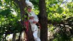 ASLANCAMI - Sünnetten Korkup Dut Ağacına Çıktı