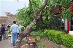 İsparta'da Şiddetli Rüzgar ve Yağış