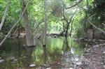 Dikili'nin Doğa Harikası Nebiler Şelalesi Tatilcileri Bekliyor
