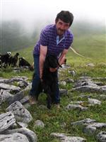 Trabzon Yaylalarında Çobanlık Cazibesini Yitirdi