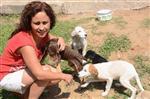 Kara Yolunda Ölüme Terk Edilen Yavru Köpeklere Sahip Çıktı