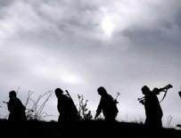 'IŞİD 300 PKK/PYD mensubunu kurşuna dizdi' iddiası