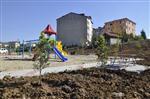 ERİK AĞACI - Derince Sırrıpaşa Mahallesi Yeni Parkına Kavuşuyor