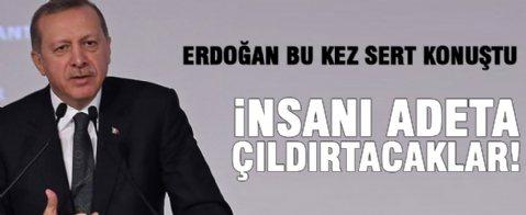 Erdoğan sert konuştu: İnsanı çıldırtacaklar
