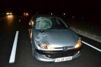 YENIMUHACIR - Otomobilin Çarptığı Kadın Hayatını Kaybetti