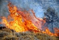 YANGIN HELİKOPTERİ - Mersin'de Orman Yangını