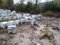 DAVUTLAR - Sel Baskını Arıcıları Da Olumsuz Etkiledi