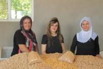 Kadın Patron, 2 Kadın İşçisi İle Birlikte Leblebi Fabrikası Açtı