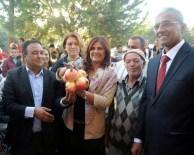 GEYRE - Aydın'da Tarlada Kalan 60 Ton Nar Halka Dağıtılacak