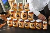 ANZER BALı - Anzer Balı Üretiminde Tarihi Rekor Kırıldı