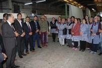 BALIK AĞI - AK Partili Yeneroğlu Açıklaması 'Yurtdışındaki İnsanımızın Yüzde 60'I Ülkenin İstikrarı İçin AK Parti'ye Oy Vermiştir'