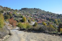 ALTIN REZERVİ - Kiraz Köyde 'Altın' Heyecanı