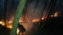 Korgan'da Çıkan Orman Yangını Korkuttu