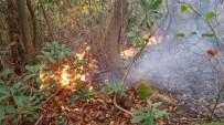 Çatalpınar'da 4 Günde 2. Orman Yangını