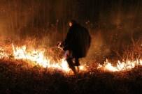 Akkuş'ta Orman Yangını