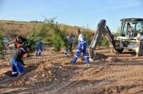 Altındağ'da Yeşil Alanların Sayısı Artıyor