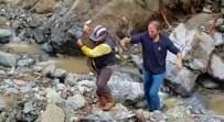 Su İçmek İçin Dereye İnen Yavru Ceylanı Köpeklerden Mahalle Muhtarı Kurtardı