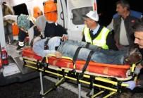 MEHMET KEÇECI - Domuz Sürüsü Facia Getirdi Açıklaması 3 Ölü, 2 Yaralı