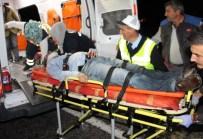 MEHMET KEÇECI - Yola Çıkan Domuz Faciaya Neden Oldu Açıklaması 3 Ölü, 2 Yaralı