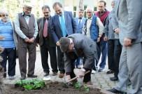 ZIHNI ŞAHIN - Başkan Şahin, Huzurevi Sakinleriyle Birlikte Çiçek Dikti