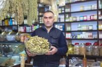 KIŞ ÇAYI - Ahlat'ta Ihlamur Satışları Arttı