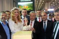 İzmir Travel Turkey'de Kastamonu Rüzgarı Esti