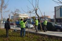 AHMET ARABACı - Park Ve Bahçeler Çalışmalarını Aralıksız Sürdürüyor