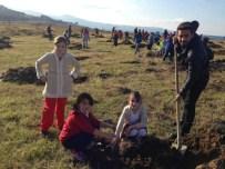 Trabzon'da Ağaçlandırma Seferberliği Başlatıldı