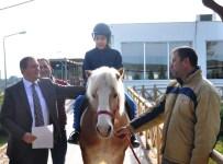 ATLI TERAPİ - Otizmli Öğrencilere 'Atlı Terapi'