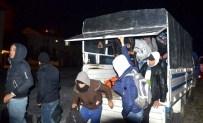 SARıKEMER - Aydın'da 46 Suriyeli Göçmen Yakalandı
