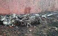 GANDHİ - İniş Yapan Uçak Duvara Çarptı Açıklaması 10 Ölü
