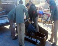 Ege Denizi'nde Göçmen Faciası Açıklaması 8 Ölü