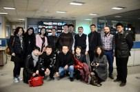 Çinli Gazeteciler Ordu Fındığına Bayıldı