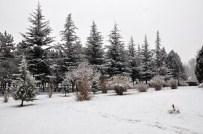 KAR MANZARALARI - Sorgun'da Kar Yağışı Kazaları Beraberinde Getirdi
