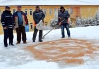 YAZıHÜYÜK - Yazıhüyük Belediyesi Kuşlara Yem Köpeklere Ekmek Dağıttı