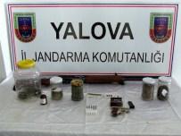 KAÇAK MAZOT - Yalova Jandarmasından Uyuşturucu Ve Kaçak Mazot Operasyonu