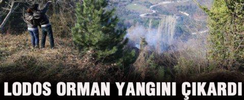 Lodos orman yangını çıkardı
