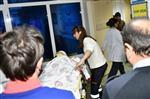 HASTANE BAHÇESİ - Gümüşhanespor Asbaşkanının Annesi Kazada Öldü
