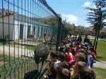 Kadışehri Kaymakamlığı Mayıs Ayında Öğrenciler İçin Gezi Planladı